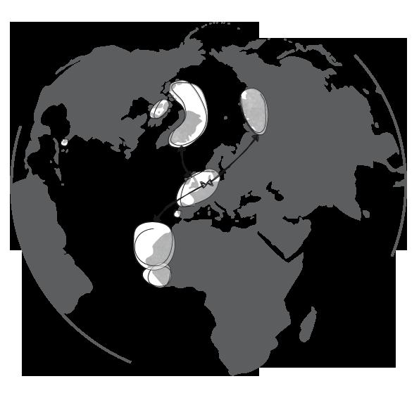 Metawad-Wereldbol-NEW