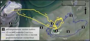 Figuur_1_TOA_waarneming_kanoet_westelijke_waddenzee_gemaakt_door_allert_bijleveld